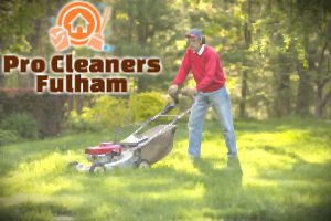 lawn-mowing-fulham